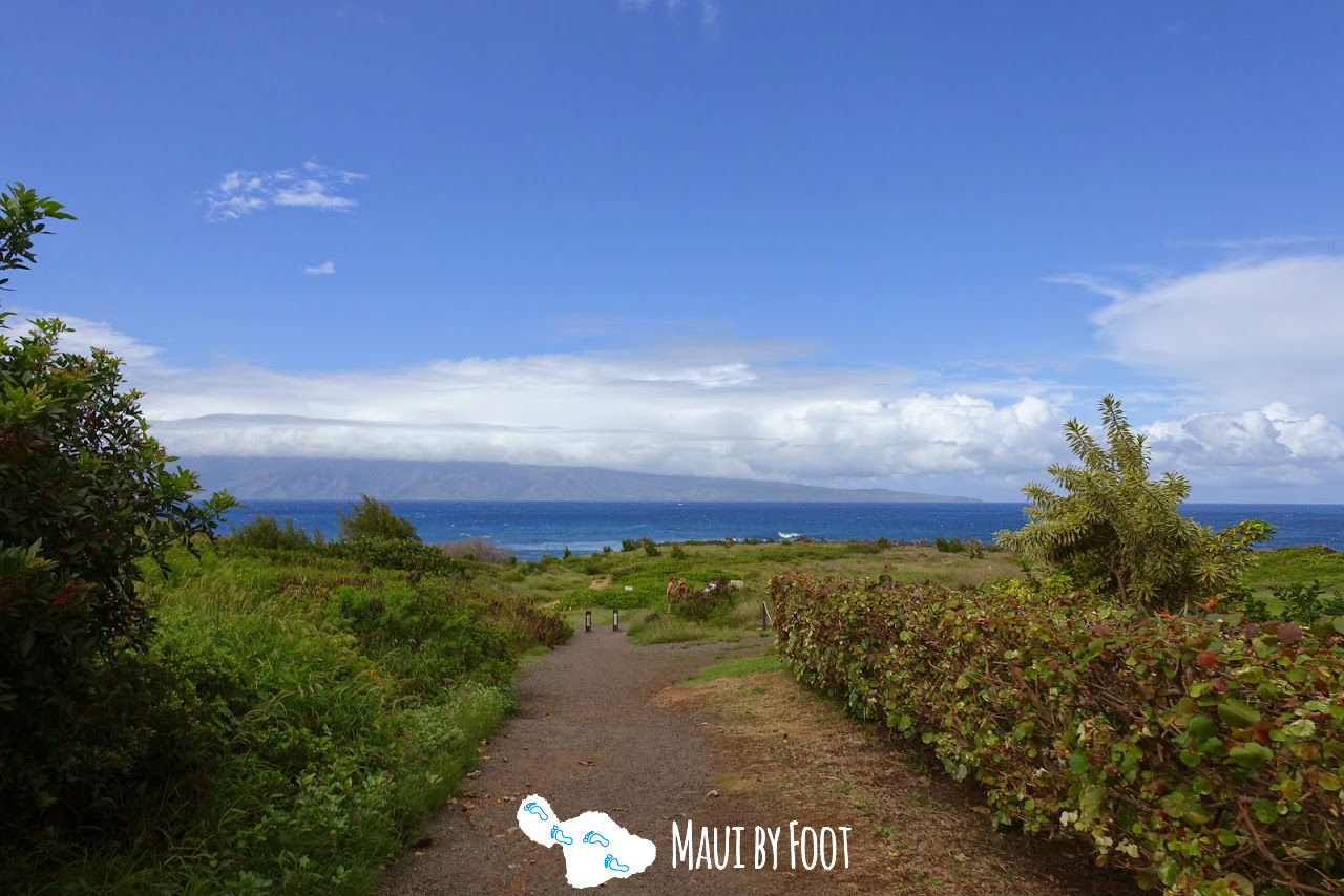 Best Maui Hikes - Kapalua Coast Trail