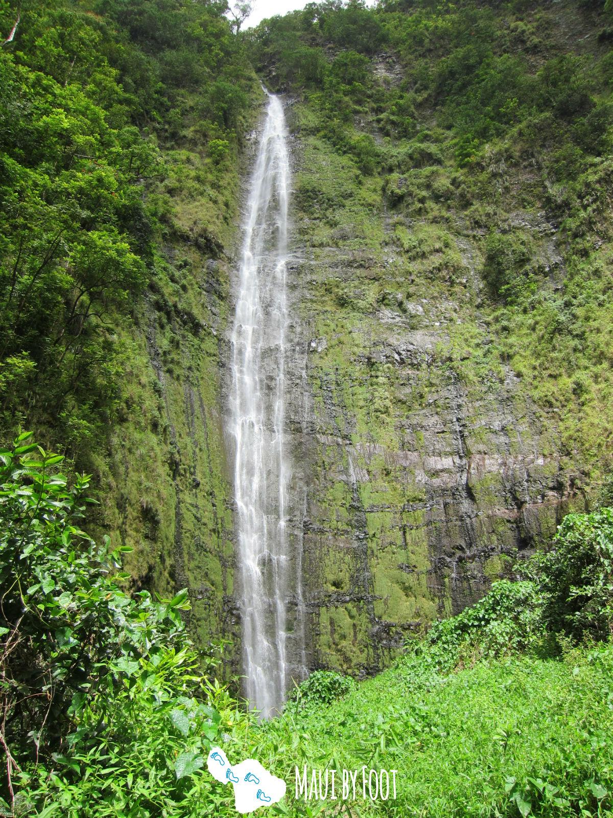 Best Maui Hikes - Pipiwai Trail & Waimoku Falls